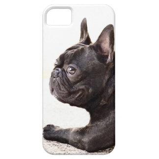Dogo francés iPhone 5 carcasas