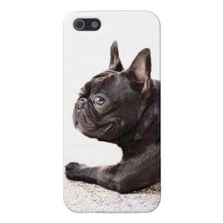 Dogo francés iPhone 5 cárcasas