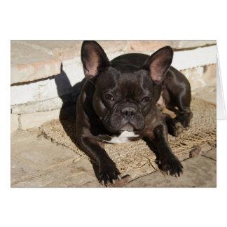 Dogo francés malhumorado tarjeta de felicitación