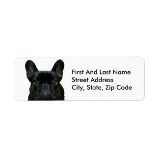 Dogo francés negro lindo etiqueta de remitente