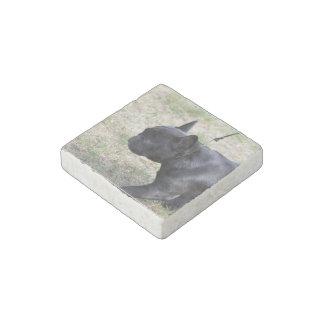 Dogo francés negro lindo imán de piedra