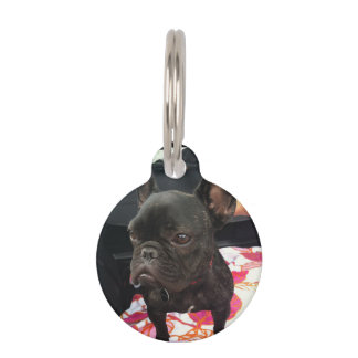 Dogo francés negro placa para mascotas