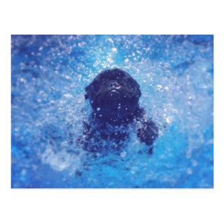 Dogo francés negro postales