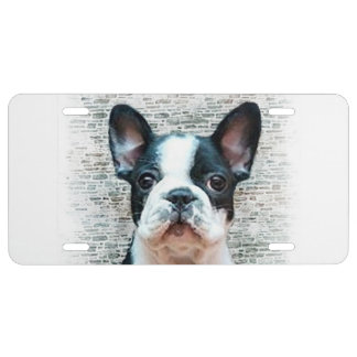 Dogo francés placa de matrícula