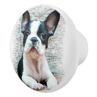 Dogo francés pomo de cerámica