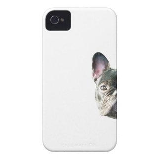 Dogo francés que mira a escondidas la caja del t iPhone 4 carcasa