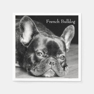Dogo francés servilletas desechables