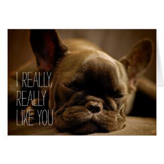 Dogo francés soñoliento tarjeta de felicitación