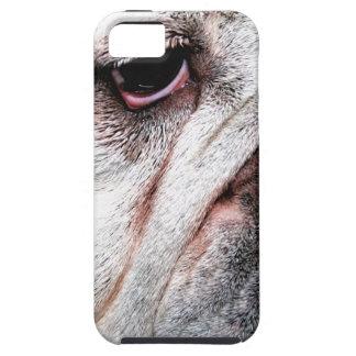 Dogo gruñón funda para iPhone SE/5/5s