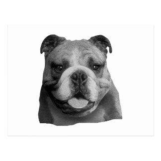 Dogo - imagen estilizada tarjeta postal