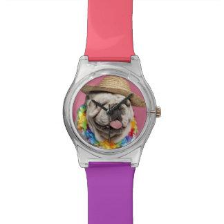 Dogo inglés (18 meses) que lleva una paja reloj