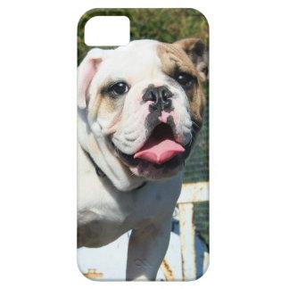 Dogo inglés funda para iPhone SE/5/5s
