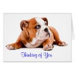 Dogo inglés que piensa en usted verso de la tarjet felicitacion