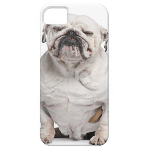 Dogo inglés, sentándose funda para iPhone 5 barely there