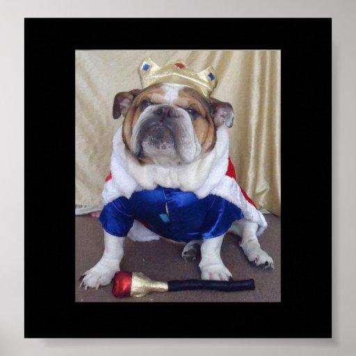 ¡Dogo inglés vestido como poster de los derechos!