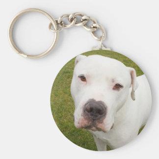 Dogo Key Chains