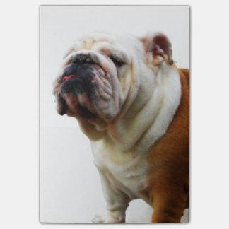 Dogo Notas Post-it