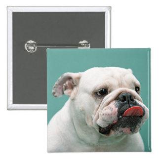 Dogo Pin Cuadrada 5 Cm