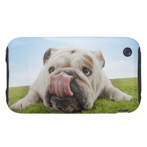 Dogo que miente en la hierba que lame los labios tough iPhone 3 carcasa