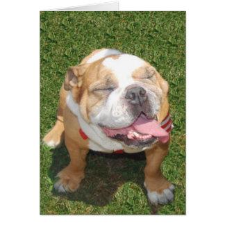 Dogo sonriente tarjetón