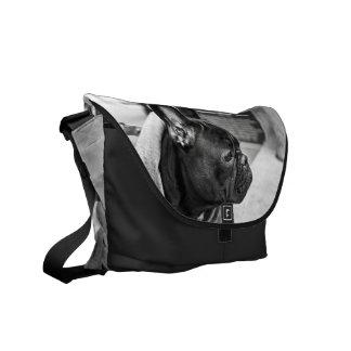 Dogo urbano bolsas de mensajeria