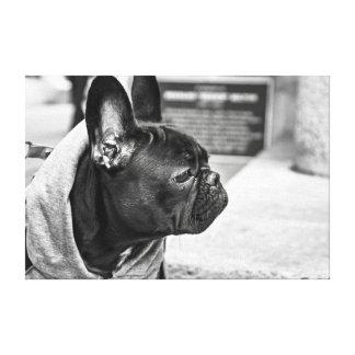Dogo urbano impresión en lienzo