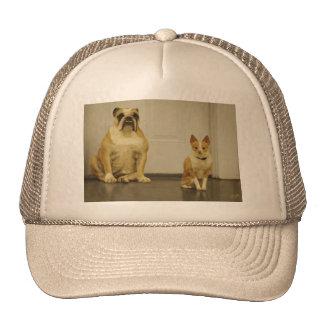 Dogo y amigo (sepia) gorros bordados