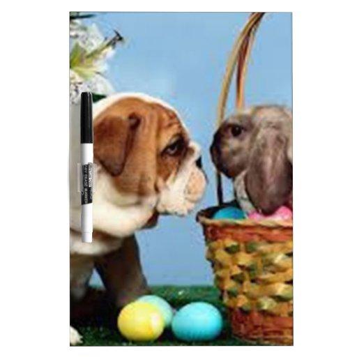 Dogo y conejo