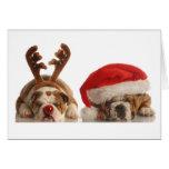 Dogos del navidad en los gorras de Santa Tarjetas