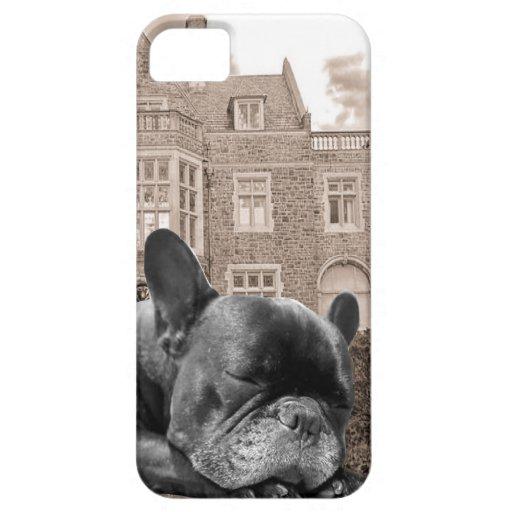 Dogos franceses el dormir iPhone 5 cárcasas