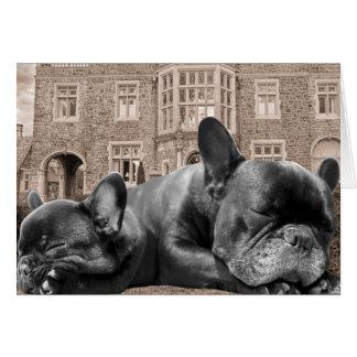Dogos franceses el dormir tarjeta de felicitación
