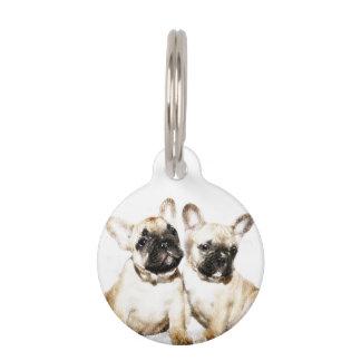 Dogos franceses placa de mascota