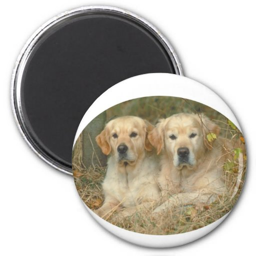 Dogs 2 Inch Round Magnet
