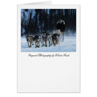 Dogs and Musher Card