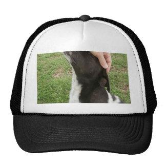 Dog's are a man's best friend! trucker hat
