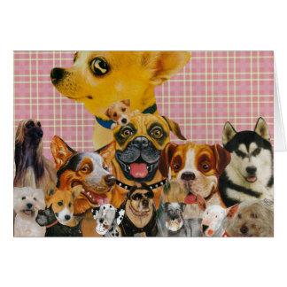 Dogs are Fun Card