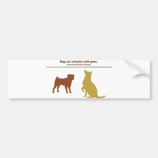 Dogs Are Miracles Bumper Sticker