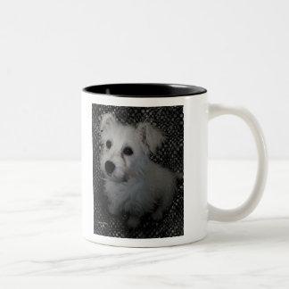 Dogs are Really People Mug