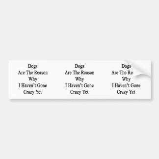 Dogs Are The Reason Why I Haven't Gone Crazy Yet Car Bumper Sticker