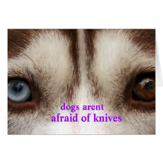 dogs arent afraid card