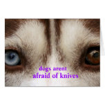 dogs arent afraid greeting card