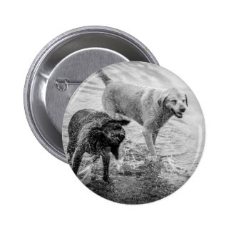 Dogs At The Beach Button Badge