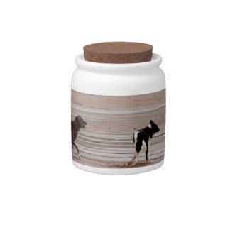 Dogs at the Beach Candy Jar