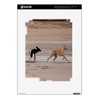 Dogs at the Beach iPad 3 Skin