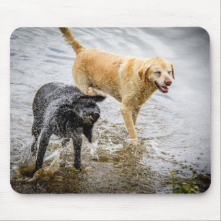 Dogs at the Beach Mouse Pad