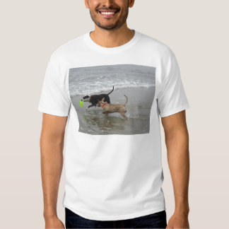 Dogs at the Beach Tee Shirts
