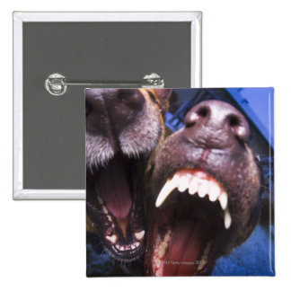 Dogs barking 2 inch square button