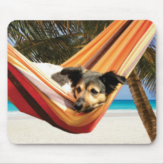 Dog's Beach Time Mouse Pad