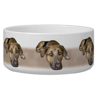Dogs Bowl