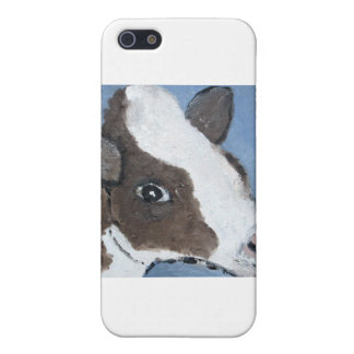 dogs by eric ginsburg case for iPhone SE/5/5s